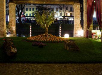 Un Giardino ad Arte